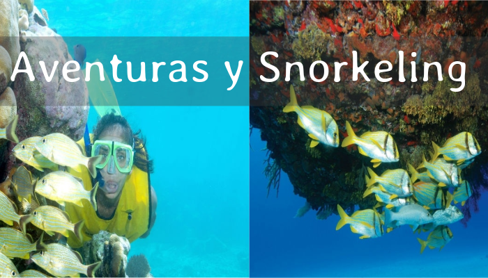 Tour de Aventuras y Snorkeling desde Riviera Maya