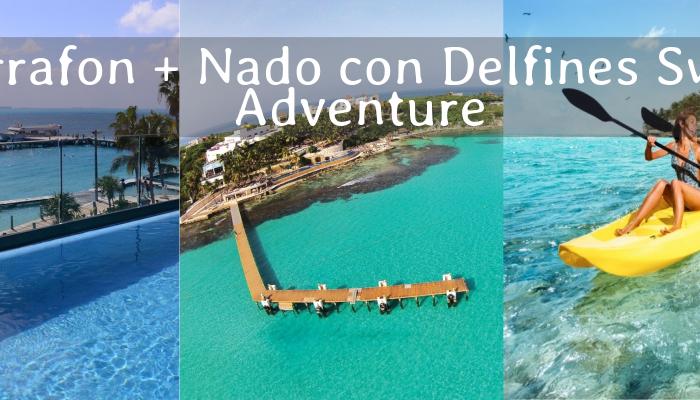 Royal Garrafón y Nado con Delfines Swim Adventure