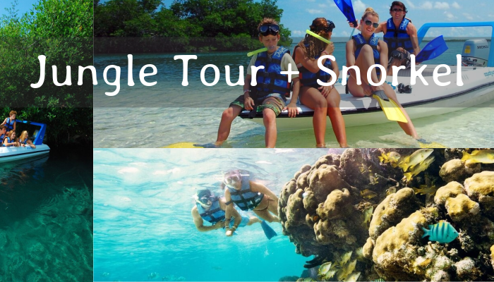 Paseo en Lancha Jungle Tour y Snorkel en Cancún