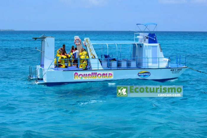 Tours en Cancún