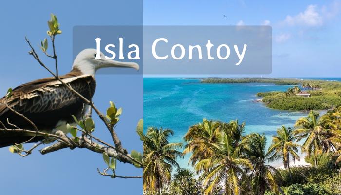 Promo Mexicano Tour Isla Contoy desde Cancún