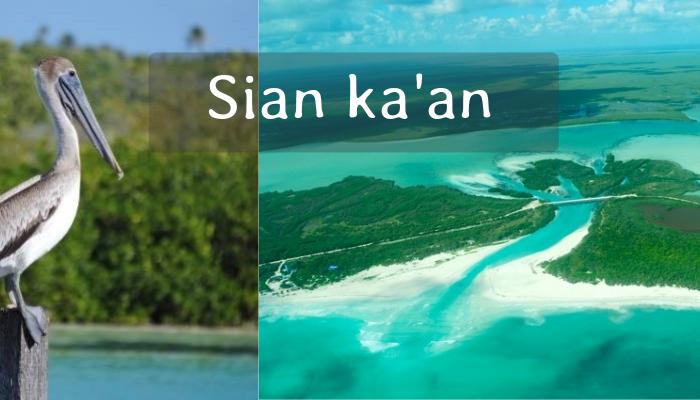 Tour a la Reserva Ecológica de Sian Ka'an desde Cancún