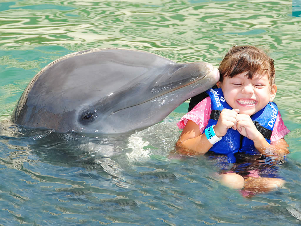 Xel-Há con delfines (Dolphin Ride)